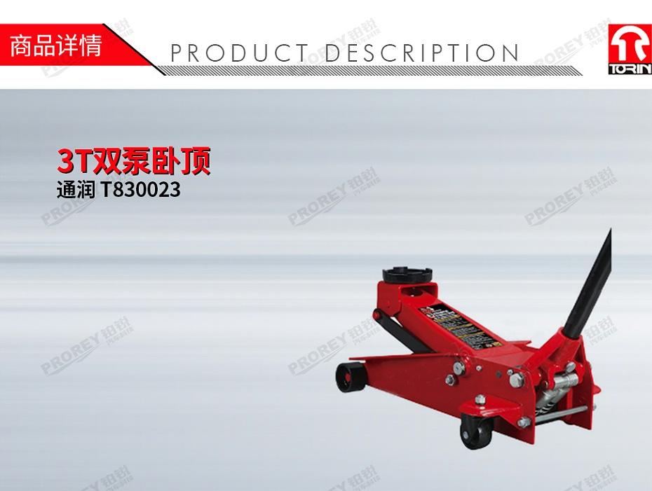 GW-100100023-通润 T830023 3T双泵卧顶-1